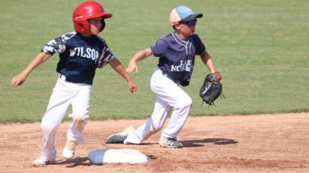 Discover Wilson Baseball
