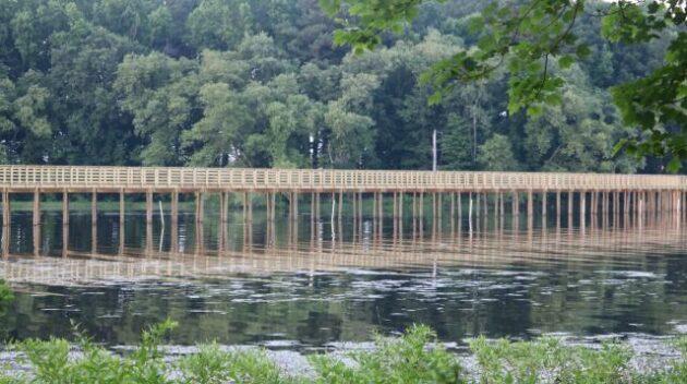 Discover Wilson Bridge